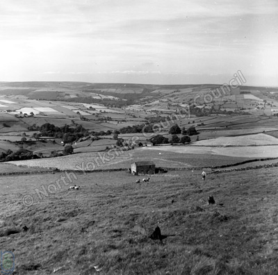 Nidderdale from Greenhow